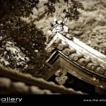 Japanese Wedding Photos 02